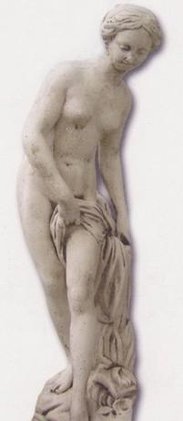 Vénus nue